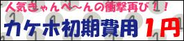 一円バナー(かけほ)のコピー