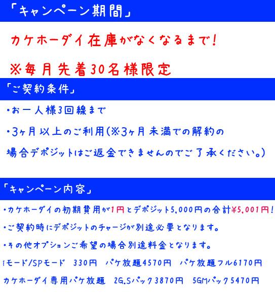 一円キャンペーン規約 kakehoのコピー